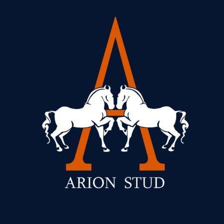 Arion Stud